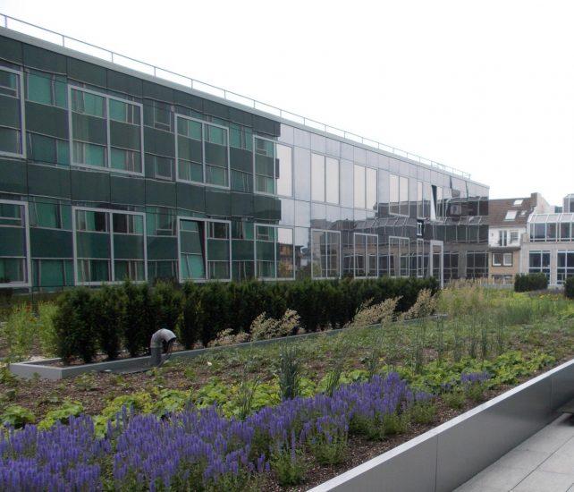 Crown Düsseldorf Glasfassade und Gründach